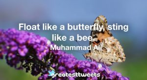 Float like a butterfly, sting like a bee. - Muhammad Ali.001