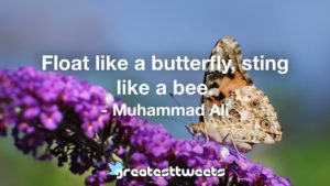 Float like a butterfly, sting like a bee. - Muhammad Ali.001