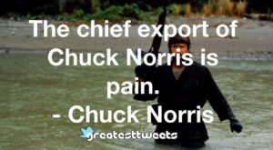 The chief export of Chuck Norris is pain. - Chuck Norris