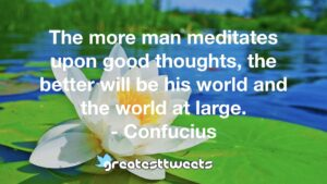 The more man meditates upon good thoughts, the better will be his world and the world at large. - Confucius