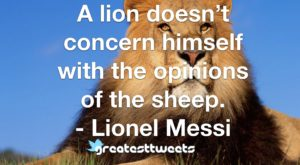 A lion doesn't concern himself with the opinions of the sheep. - Lionel Messi