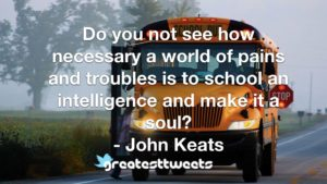 Do you not see how necessary a world of pains and troubles is to school an intelligence and make it a soul? - John Keats