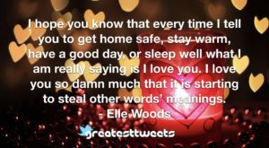 I hope you know that every time I tell you to get home safe, stay warm, have a good day, or sleep well what I am really saying is I love you. I love you so damn much that it is starting to steal other words' meanings.- Elle Woods.001