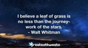 I believe a leaf of grass is no less than the journey- work of the stars. - Walt Whitman