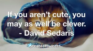 If you aren't cute, you may as well be clever. - David Sedaris