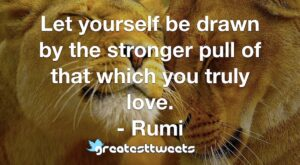Let yourself be drawn by the stronger pull of that which you truly love. - Rumi