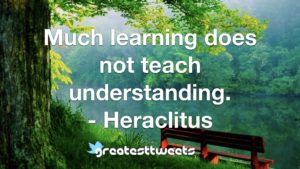 Much learning does not teach understanding. - Heraclitus