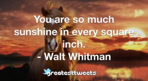 You are so much sunshine in every square inch. - Walt Whitman