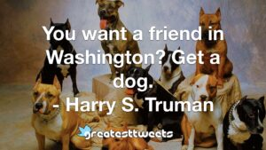 You want a friend in Washington? Get a dog. - Harry S. Truman