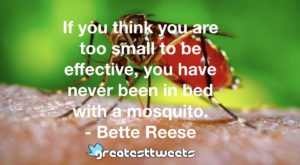 If you think you are too small to be effective, you have never been in bed with a mosquito. - Bette Reese