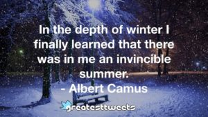 In the depth of winter I finally learned that there was in me an invincible summer. - Albert Camus