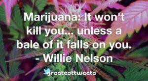Marijuana: It won't kill you... unless a bale of it falls on you. - Willie Nelson