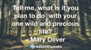Tell me, what is it you plan to do with your one wild and precious life? - Mary Oliver