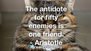 The antidote for fifty enemies is one friend. - Aristotle