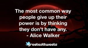 The most common way people give up their power is by thinking they don't have any. - Alice Walker