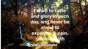 I want to taste and glory in each day, and never be afraid to experience pain. - Sylvia Plath
