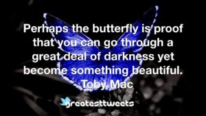 Perhaps the butterfly is proof that you can go through a great deal of darkness yet become something beautiful. - Toby Mac