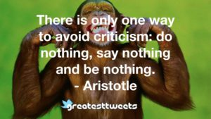 There is only one way to avoid criticism: do nothing, say nothing and be nothing. - Aristotle