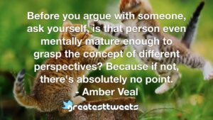 Before you argue with someone, ask yourself, is that person even mentally mature enough to grasp the concept of different perspectives? Because if not, there's absolutely no point. - Amber Veal