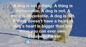 A dog is not a thing. A thing is replaceable. A dog is not. A thing is disposable. A dog is not. A thing doesn't have a heart. A dog's heart is bigger than any thing you can ever own.- Elizabeth Parker.001