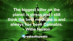 The biggest killer on the planet is stress and I still think the best medicine is and always has been Cannabis. - Willie Nelson