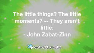 The little things? The little moments? -- They aren't little. - John Zabat-Zinn
