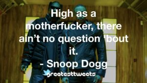 High as a motherfucker, there ain't no question 'bout it. - Snoop Dogg