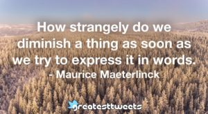 How strangely do we diminish a thing as soon as we try to express it in words. - Maurice Maeterlinck