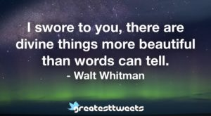 I swore to you, there are divine things more beautiful than words can tell. - Walt Whitman