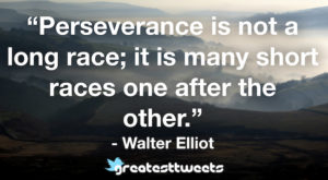 Perseverance is not a long race; it is many short races, one after the other. - Walter Elliot