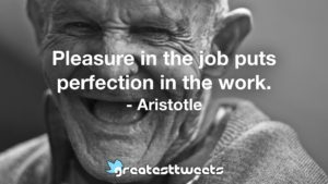 Pleasure in the job puts perfection in the work. - Aristotle