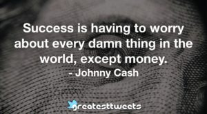 Success is having to worry about every damn thing in the world, except money. - Johnny Cash