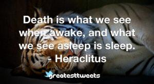 Death is what we see when awake, and what we see asleep is sleep. - Heraclitus