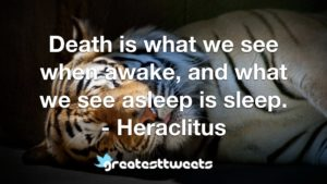 Death is what we see when awake, and what we see asleep is sleep. - Heraclitus