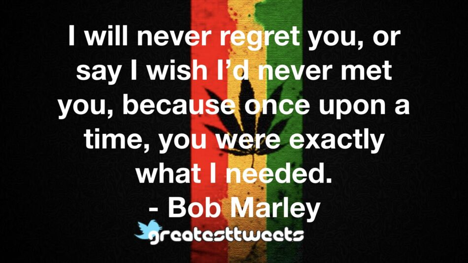 I will never regret you, or say I wish I'd never met you, because once upon a time, you were exactly what I needed. - Bob Marley