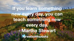 If you learn something new every day, you can teach something new every day. - Martha Stewart
