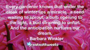 Every gardener knows that under the cloak of winter lies a miracle...a seed waiting to sprout, a bulb opening to the light, a bud straining to unfurl. And the anticipation nurtures our dream.- Barbara Winkler.001