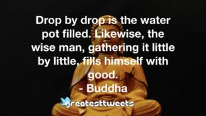 Drop by drop is the water pot filled. Likewise, the wise man, gathering it little by little, fills himself with good. - Buddha