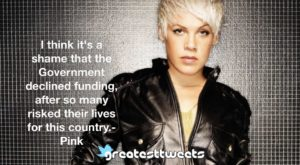 I think it's a shame that the Government declined funding, after so many risked their lives for this country.- Pink