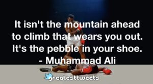 It isn't the mountain ahead to climb that wears you out. It's the pebble in your shoe. - Muhammad Ali