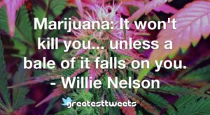 Marijuana: It won't kill you... unless a bale of it falls on you. - Willie Nelson