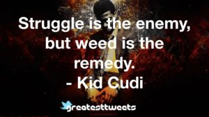 Struggle is the enemy, but weed is the remedy. - Kid Cudi