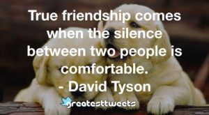 True friendship comes when the silence between two people is comfortable. - David Tyson