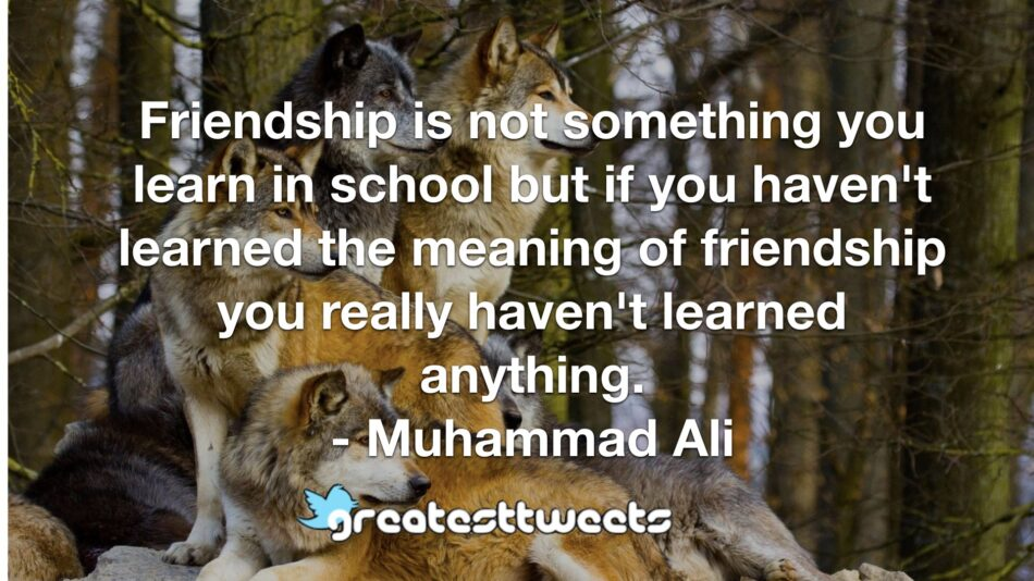 Friendship is not something you learn in school but if you haven't learned the meaning of friendship you really haven't learned anything. - Muhammad Ali