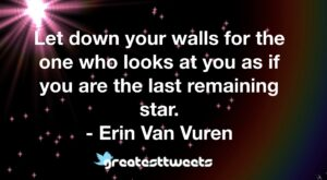 Let down your walls for the one who looks at you as if you are the last remaining star. - Erin Van Vuren