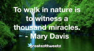 To walk in nature is to witness a thousand miracles. - Mary Davis