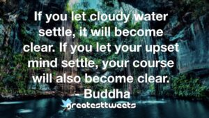 If you let cloudy water settle, it will become clear. If you let your upset mind settle, your course will also become clear. - Buddha