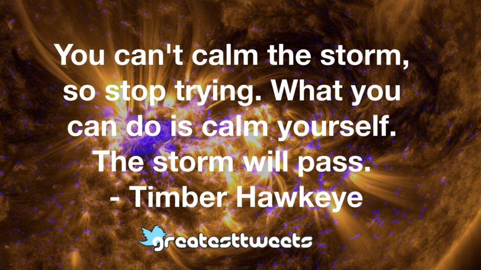 You can't calm the storm, so stop trying. What you can do is calm yourself. The storm will pass. - Timber Hawkeye